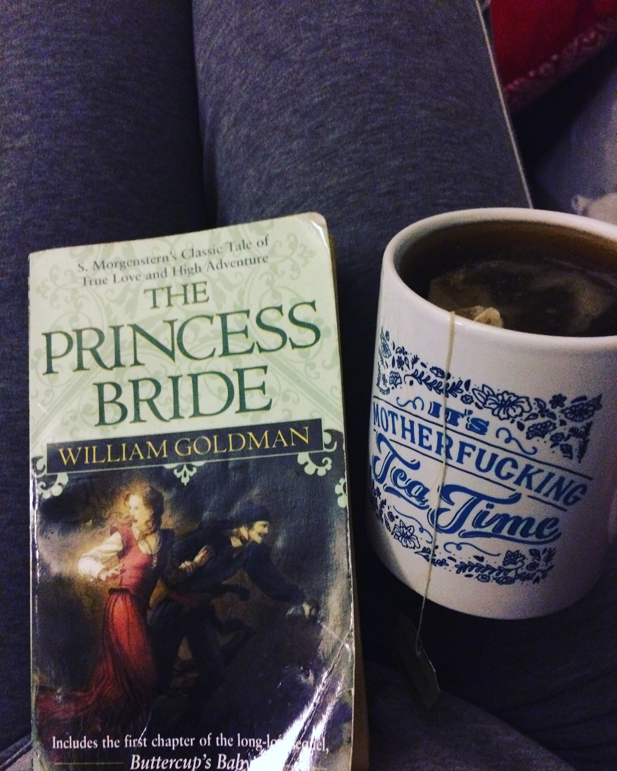 a summary of the princess bride by william goldman The princess bride by william goldman 1987-shooting draft ----.
